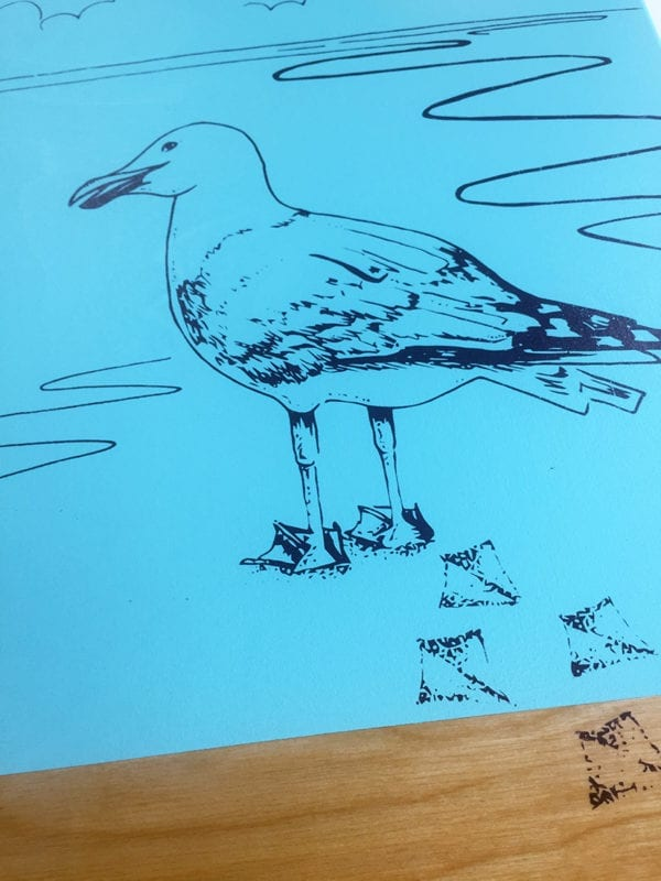Seagull board