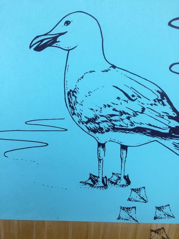seagull bellyboard